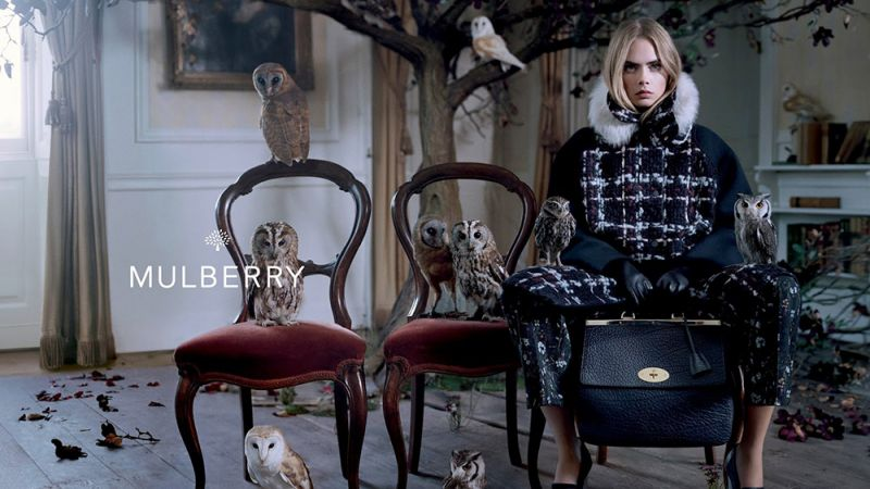 mulberry-advertisement-800x450